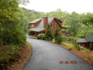 Mountain Vine Lodge-Sleeps up to 12 - Blue Ridge vacation rentals