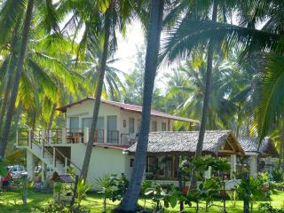 VILLA LACTEA:  Oceanfront  with access to estuary - Barra de Santiago vacation rentals