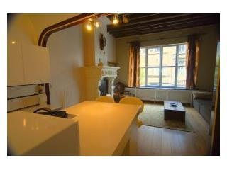 VAN HECKE: spacious apartment right in the city-center of Antwerp - Antwerpen vacation rentals