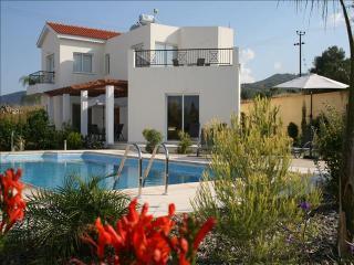 Villa Panemorfi Thea - Argaka vacation rentals