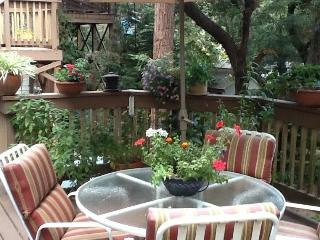 ESCAPE TO PARADISE IN THE REDWOODS - SANTA CRUZ - Boulder Creek vacation rentals
