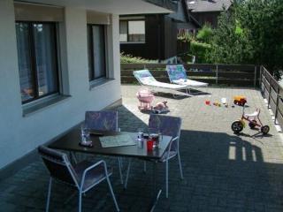 LLAG Luxury Vacation Apartment in Emmetten - 710 sqft, central, quiet, convenience (# 4362) - Schwyz vacation rentals