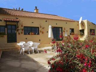 ROMANTIC RURAL COTTAGE SURROUNDED BY VINEYARD FARM - Canary Islands vacation rentals
