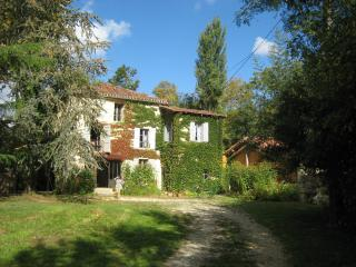 A beautiful mill upon the river Baïse in France - Castera-Lectourois vacation rentals