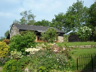 Pet friendly self Cater cottage, Dartmoor - Yelverton vacation rentals