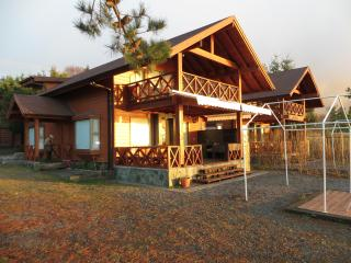 Casas nuevas orilla de playa  Lago Villarrica - Lake District vacation rentals