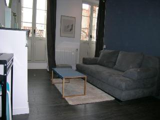 4 sleeps apartment next to downtown - Toulouse vacation rentals