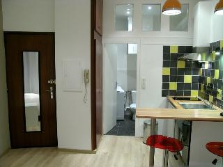 Modern Studio - next to Capitole - Toulouse vacation rentals