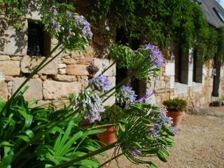 charming farm by countryside and beaches - Treguier vacation rentals