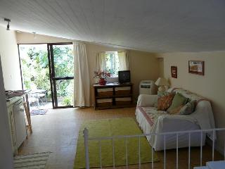 Casa Flora Loft Apartment - Realejo Alto vacation rentals