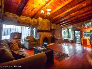 House on a volcano - amazing views! - Santiago Atitlan vacation rentals