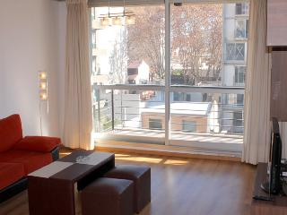 Modern one bedroom apartment - Humboldt and Guatemala st, Palermo Soho (D104PH) - Capital Federal District vacation rentals