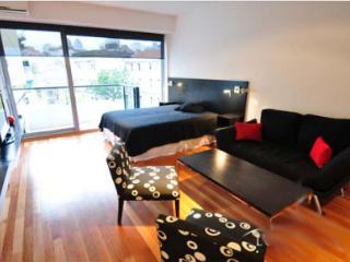 Modern Studio in Recoleta - Austria and Pacheco de Melo st (34RE) - Buenos Aires vacation rentals
