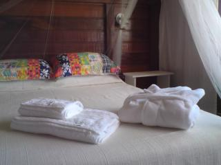 Double room in spacious house near Campeche Beach - Florianopolis vacation rentals