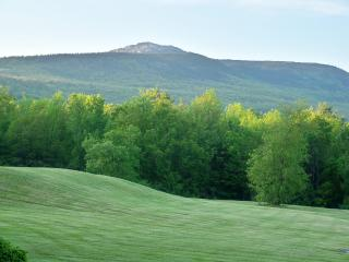 Elegant Mountainside Country Estate - Jaffrey vacation rentals