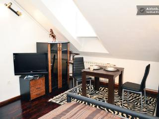 Nice Villa with Internet Access and A/C - Zagreb vacation rentals