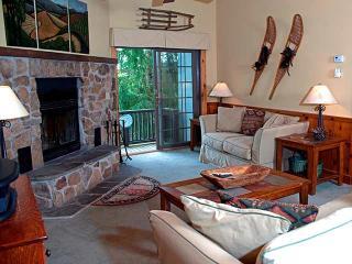Perfect 4 bedroom House in Snowshoe - Snowshoe vacation rentals