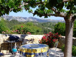 Paradise in Provence- Vacation Rental with a Fireplace, Pool, and Grill - Les Baux vacation rentals