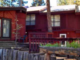 Walk to the  Chairlift! Great Location for family! - Angel Fire vacation rentals