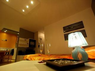 Apartment DesignMaksimir, free parking & wifi !! - Zagreb vacation rentals