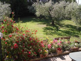 An independant apartment in large rural house - Montelibretti vacation rentals