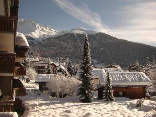 Facing south, Wi-Fi, Washers, central, by Sportcenter for Pool, Jacuzzi, Sauna - Verbier vacation rentals