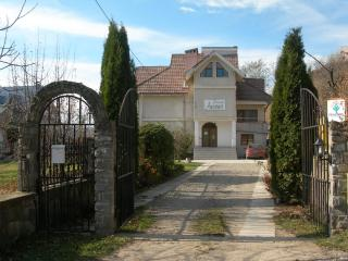 Bright 7 bedroom Bed and Breakfast in Alexandru Cel Bun - Alexandru Cel Bun vacation rentals