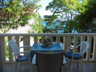 House by the sea in Center of Lumbarda - Lumbarda vacation rentals