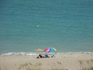 Fabulous Panoramic Ocean Views at Ocean Village Re - Hutchinson Island vacation rentals