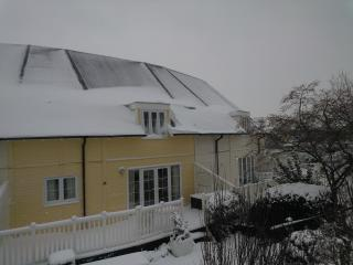 Lovely Lakeside Lodge in The Southern Cotswolds - Cirencester vacation rentals