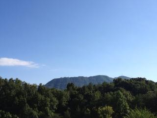 Beary Patch Hill- Great Smoky Mountains! - Sevierville vacation rentals