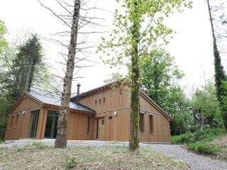 Ballyhoura Forest Luxury Homes Ireland We want you - Limerick vacation rentals