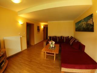 Landhaus Kitzbichler Apartment 4 - Niederndorf vacation rentals