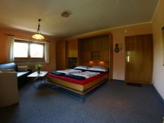 Landhaus Kitzbichler Apartment 3 - Niederndorf vacation rentals