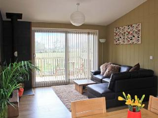 WILLOW RIVER LODGE, woodburner, WiFi, charming riverside lodge near Clun, Ref. 28858 - Clun vacation rentals