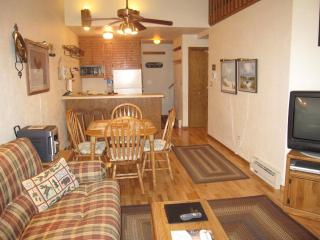Nice Condo with Internet Access and A/C - Egg Harbor vacation rentals
