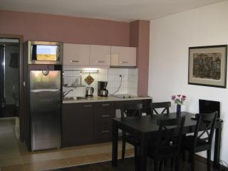 Apartment in Bansko, next to Gondola & Kempinski - Bansko vacation rentals