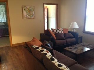 Bright Apartment with Internet Access and Refrigerator - Cleveland vacation rentals