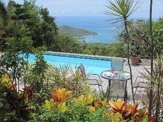 Seaclusion-St. John - Saint John vacation rentals