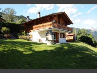 Quiet individual chalet for 6 near Anzère & skiing - Gsteig vacation rentals