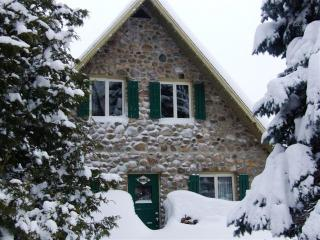Cozy cottage at Mont Sainte-Anne near Quebec city - Saint-Ferreol-Les-Neiges vacation rentals