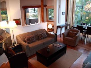 2 bedroom + 2 bath deluxe condo - Whistler Village - Whistler vacation rentals