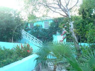 The Tree House - George Town vacation rentals