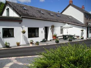 Wonderful 2 bedroom Cottage in Carmarthen - Carmarthen vacation rentals