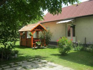 3349 Nagyvisnyó Ady Endre út 45. - Miskolc vacation rentals