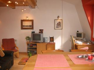 Apartment Carpe Diem red - Serbia vacation rentals
