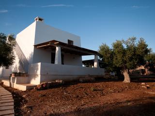 Villa in Salento with private swimming pool - Puglia vacation rentals