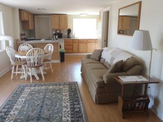 Cozy Cottage with Deck and Internet Access - Manistee vacation rentals