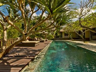 Luxurious villa 1700m2,  Gym + 20m pool - Canggu vacation rentals