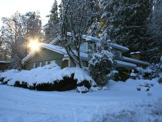 5bedroom 2,5bath house in Port Moody  30 min to Va - Vancouver Coast vacation rentals